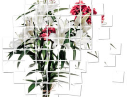 bouquet-2010